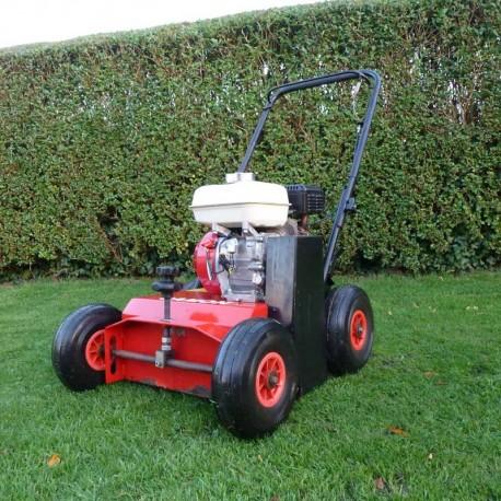 2010 CAMON LS42 Lawn Scarifier
